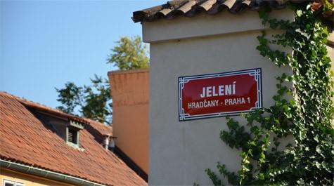 Jelení street